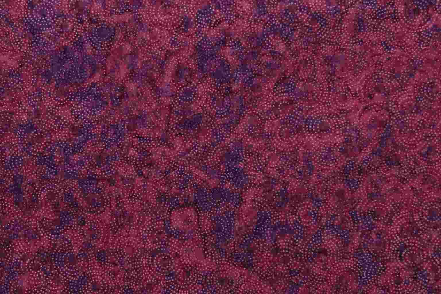 Batik fabric for quilting Gambia